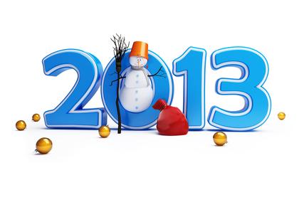 Итоги уходящего 2013 года + планы на будущее