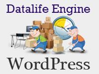 Как правильно переехать с DLE на Wordpress (инструкция)