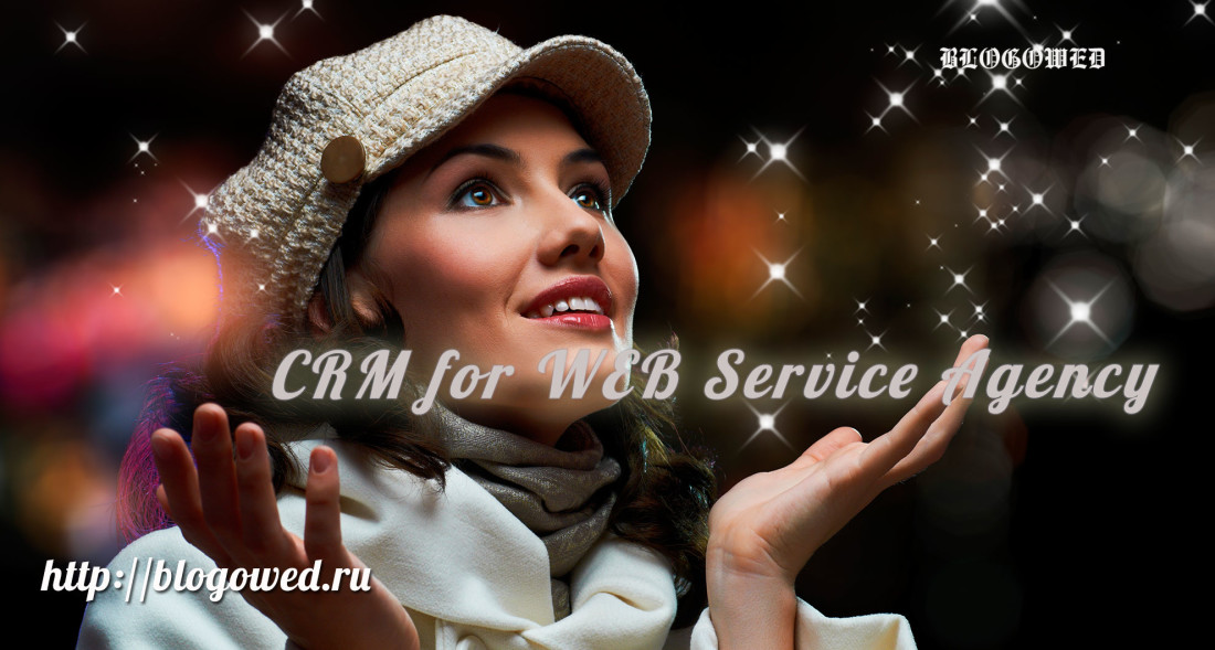 crm for web service agency blogowed