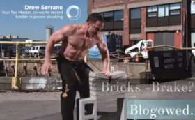 blogowed-preview-bricks