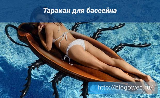 Таракан для бассейна